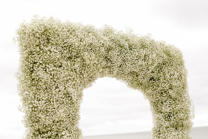 Baby's breath arch